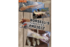 Borselli's flash flies project