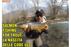 Salmon fishing for trout